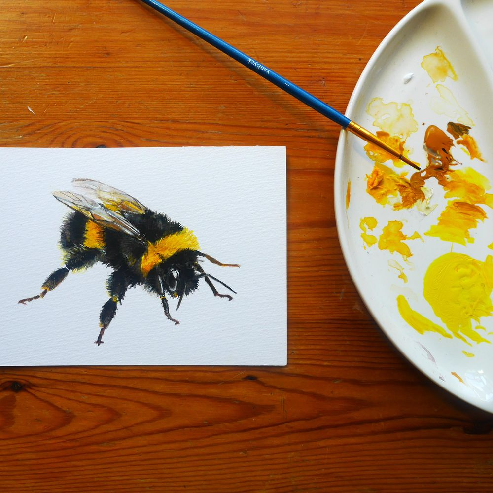 Bumble bee in gouache - image 1 - student project