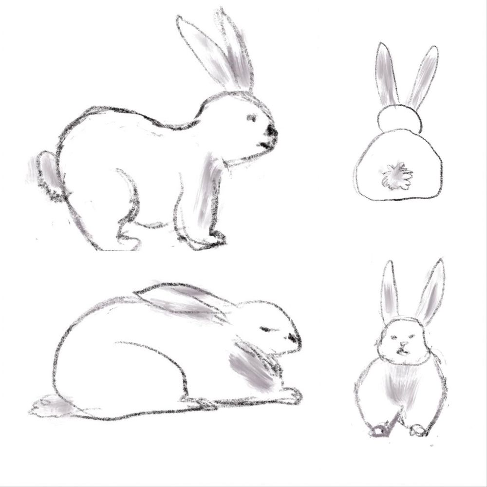 My Bunny Perspectives - image 1 - student project