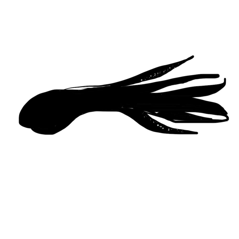 My Logo Development - image 1 - student project