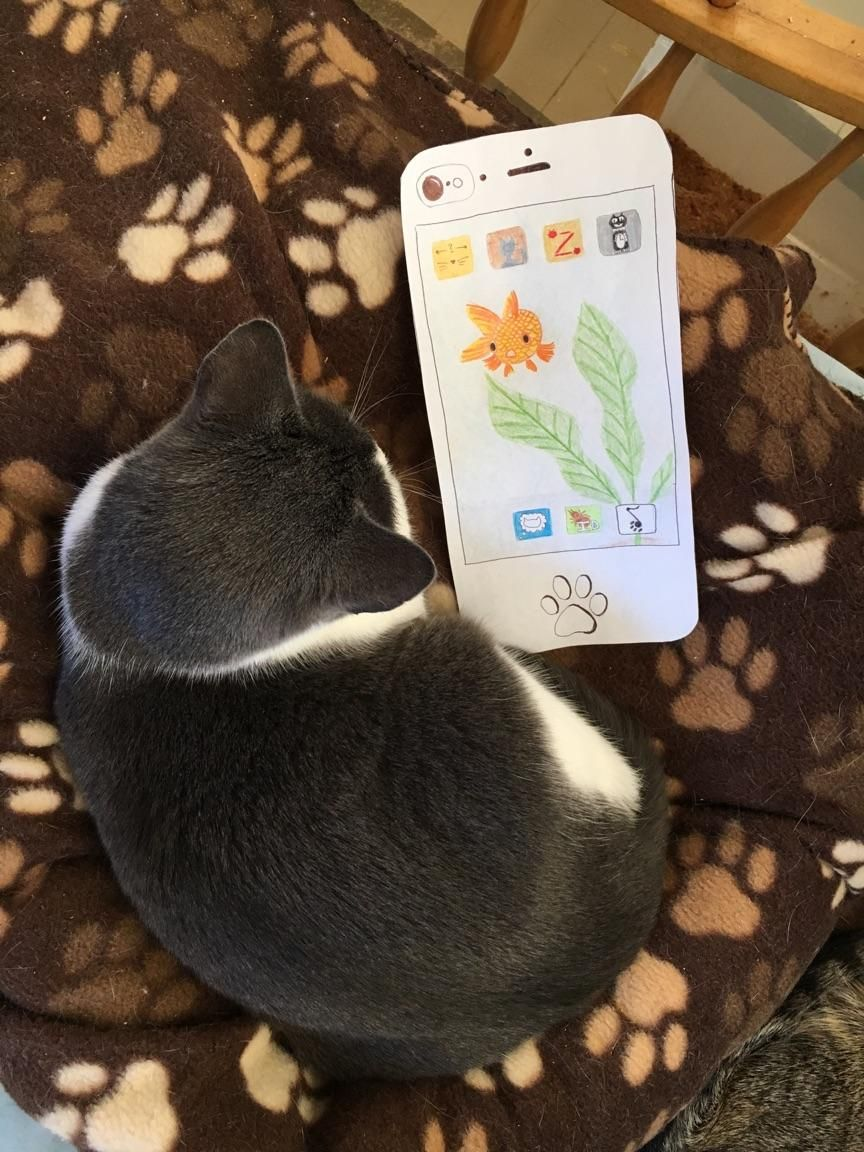 cat phone - image 2 - student project