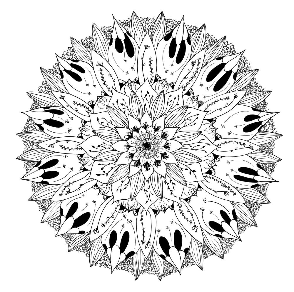 Mandala Class - image 1 - student project