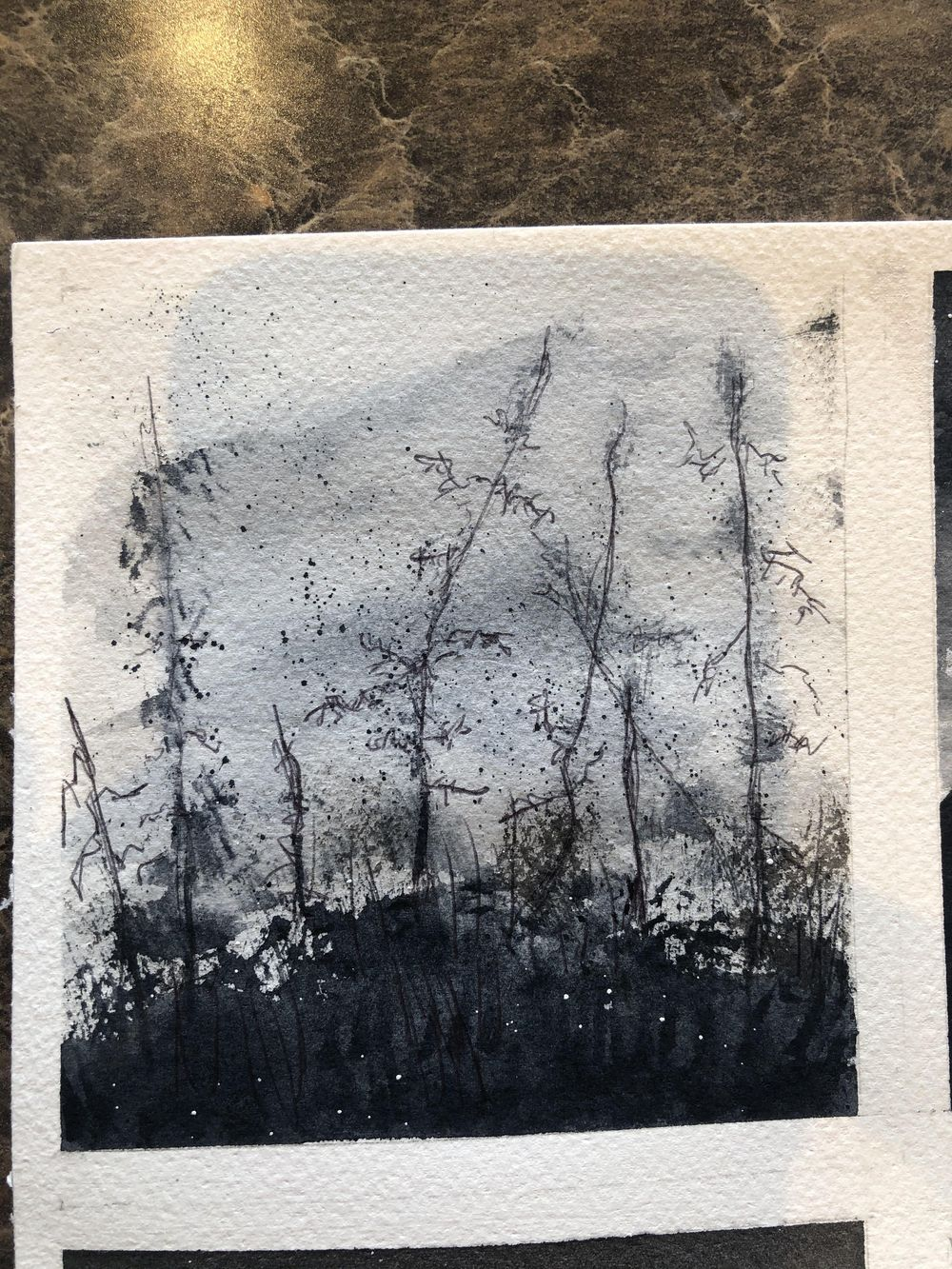 6 B & W Water Color - image 1 - student project