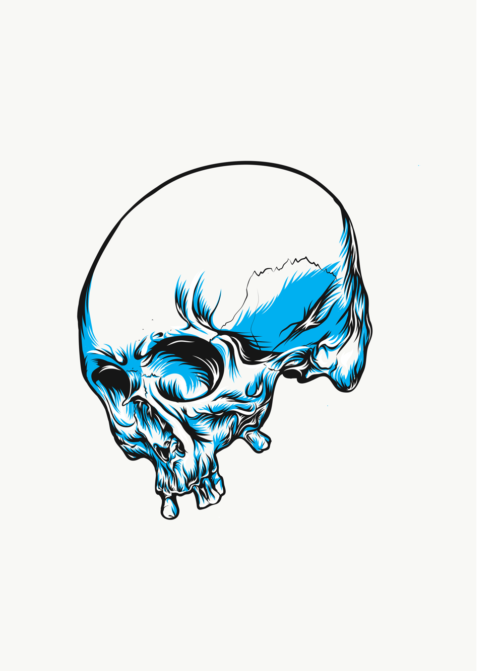 Skull - image 3 - student project