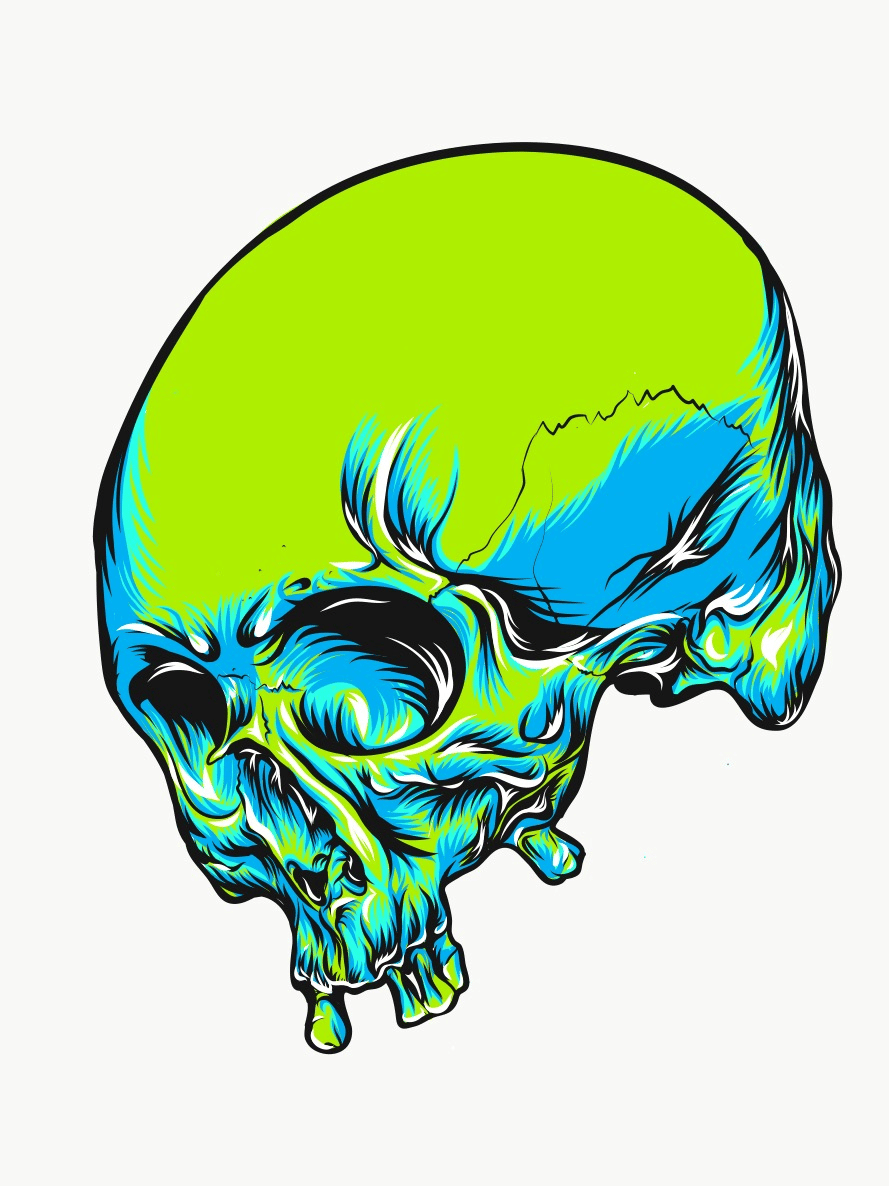 Skull - image 4 - student project