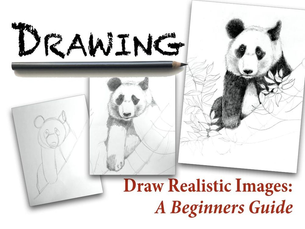 Drawing Realistic Images:A Beginners Guide - image 1 - student project