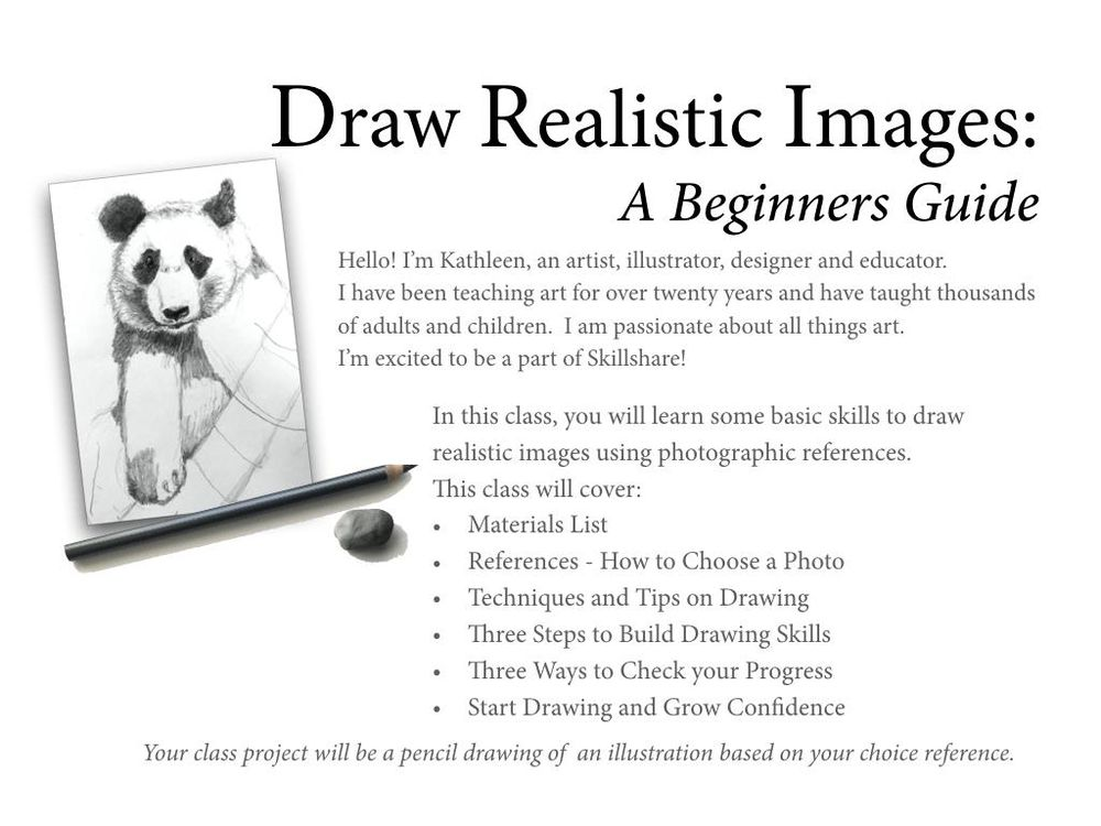 Drawing Realistic Images:A Beginners Guide - image 2 - student project