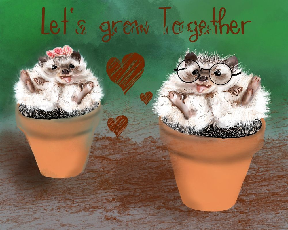 My growing hedgehogs - image 1 - student project