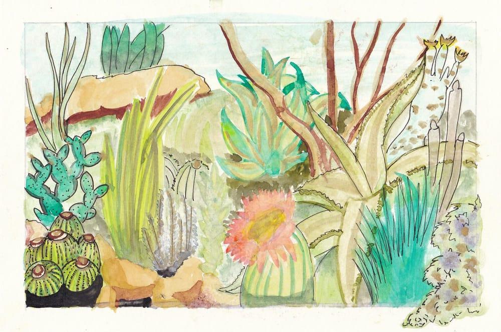 Botanical Illustration - Ashleigh - image 1 - student project