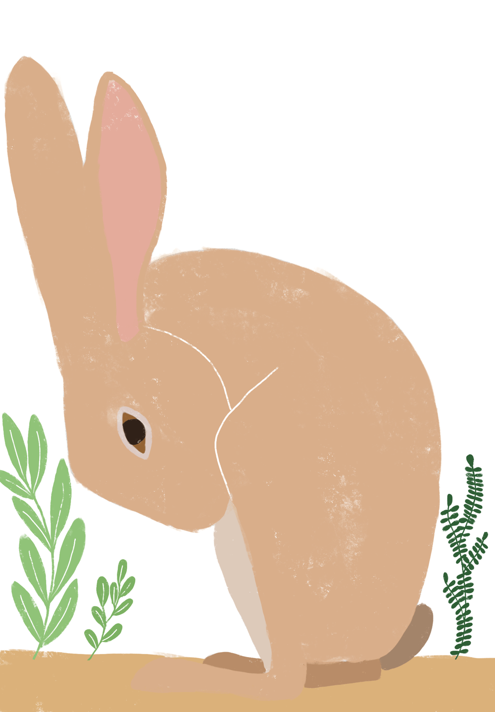 Hare - image 4 - student project