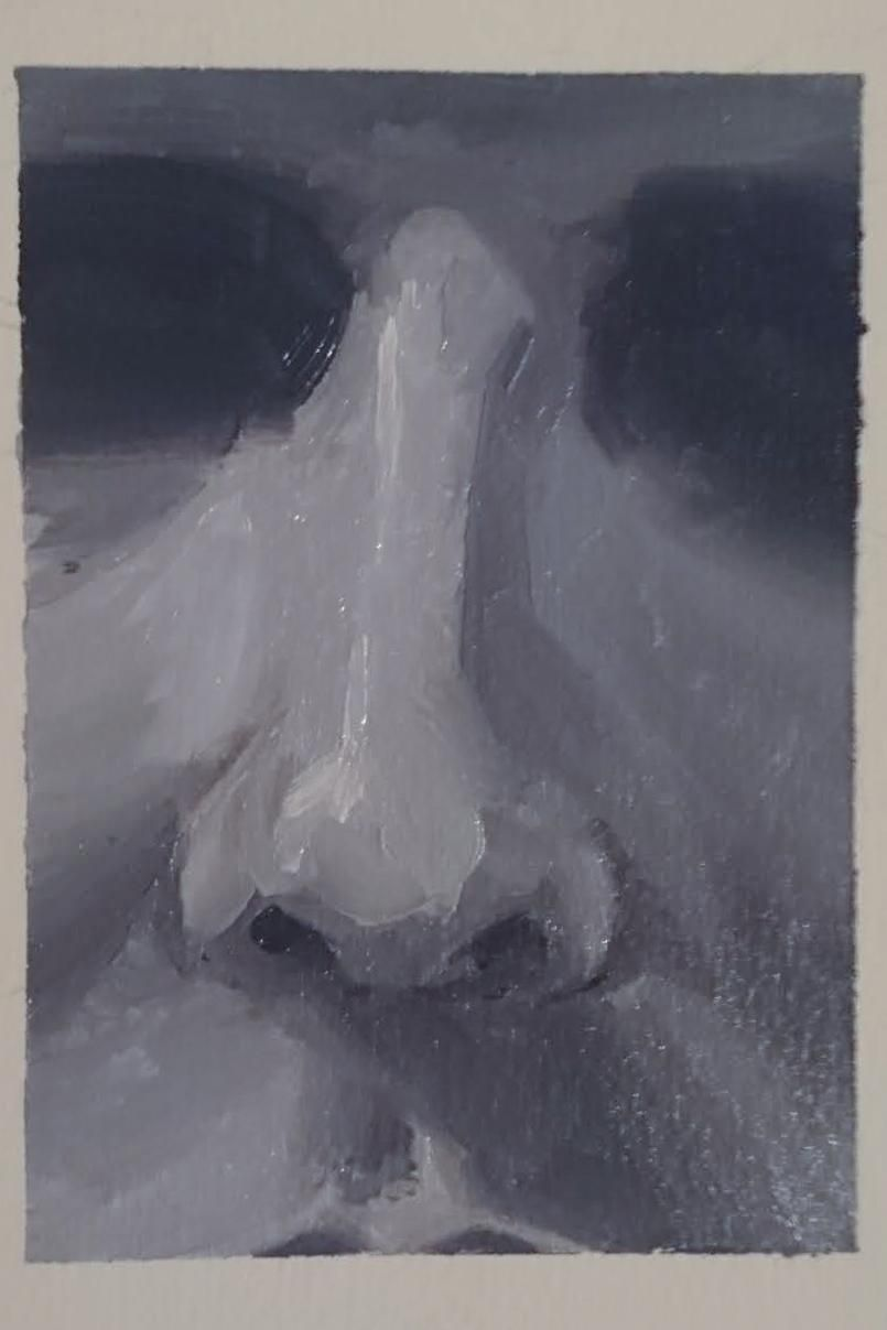 Oil painting facial features - the nose. - image 1 - student project