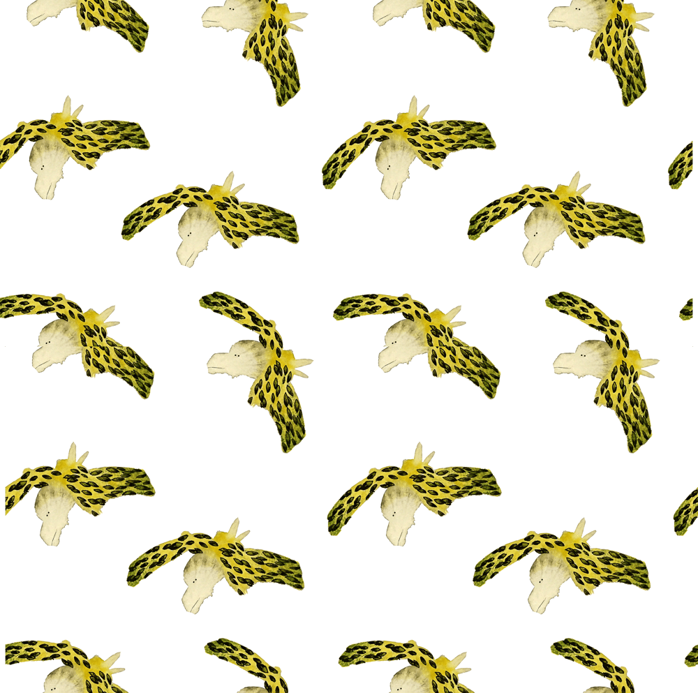 Cute animals patterns - image 1 - student project