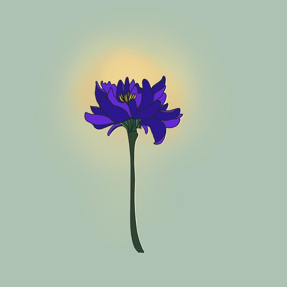 Botanical Prints - image 3 - student project