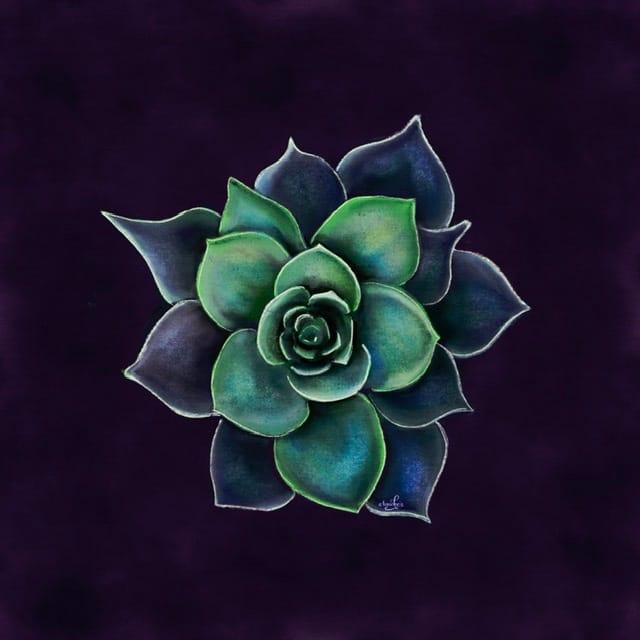 My pastel succulent - image 1 - student project