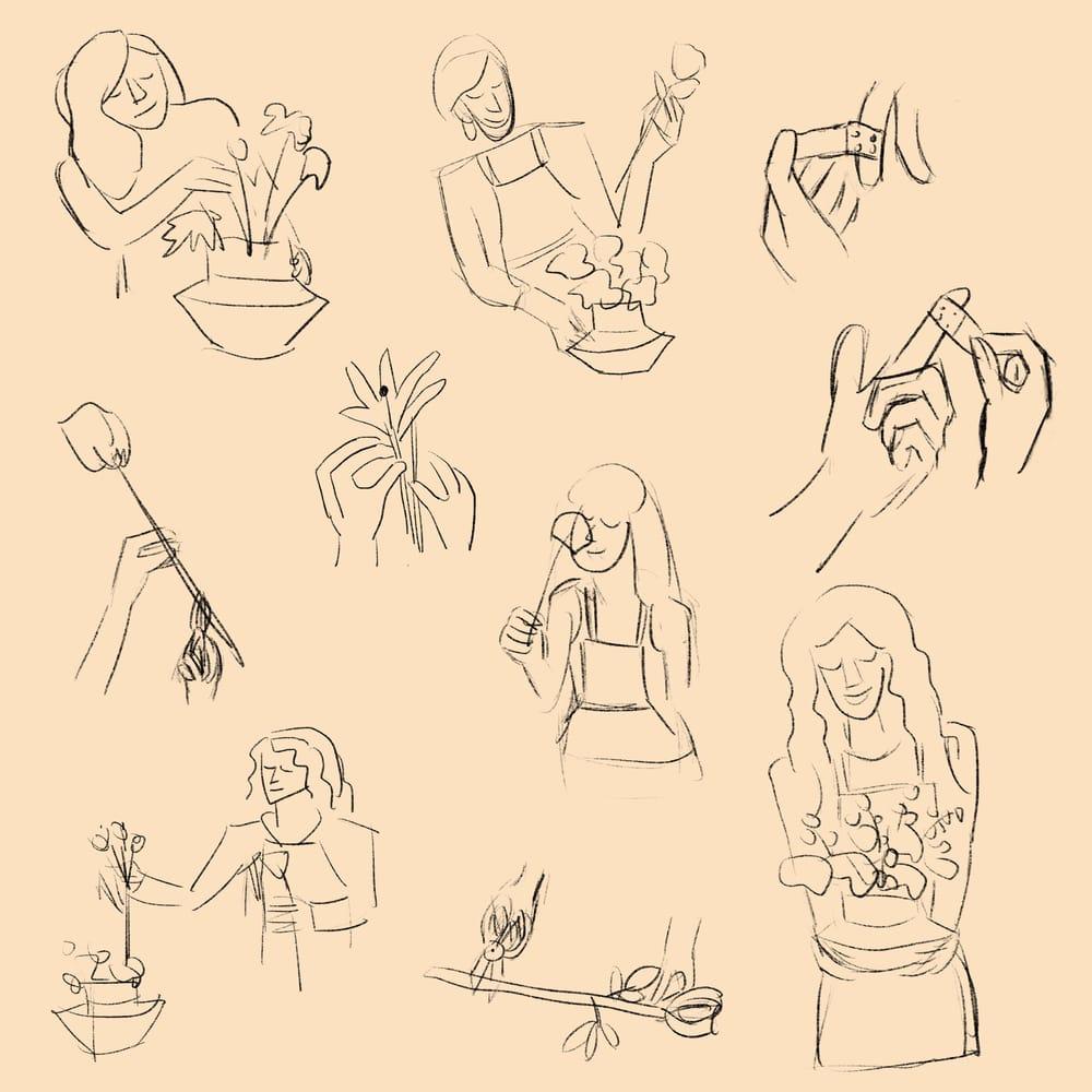 spot illustration-flower arrangements - image 3 - student project