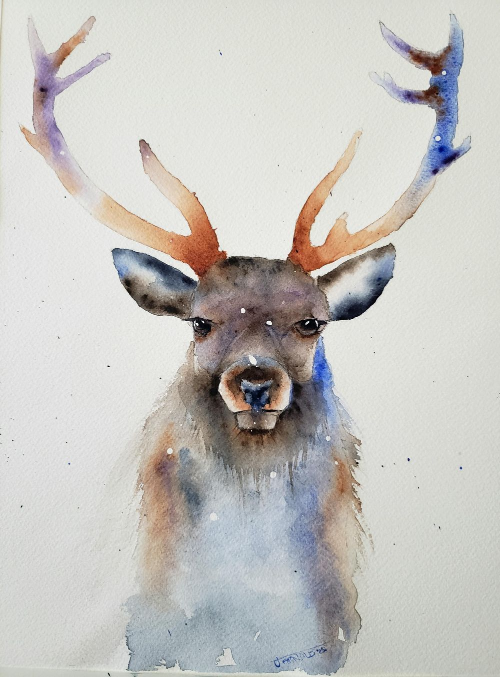 A festive Stag - image 1 - student project
