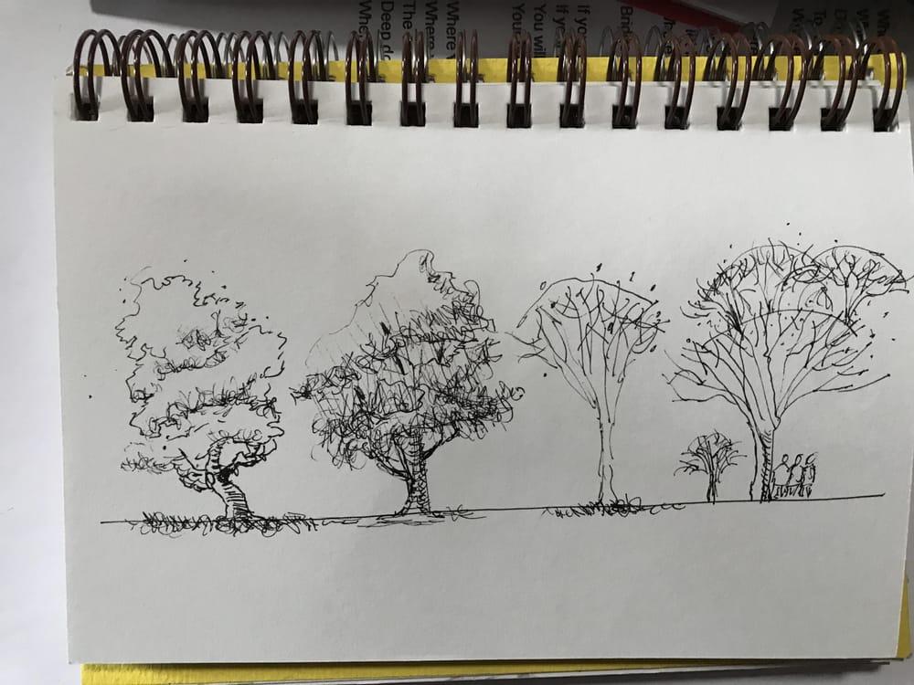 Jim Richards Urban Sketching Workshop - image 1 - student project