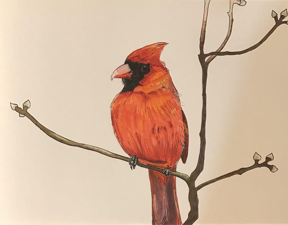 Cardinal Marker/Pen - image 1 - student project