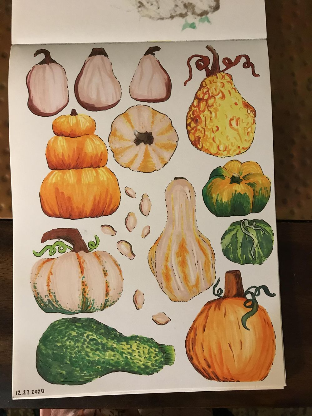 Pumpkins and Gourds - image 1 - student project