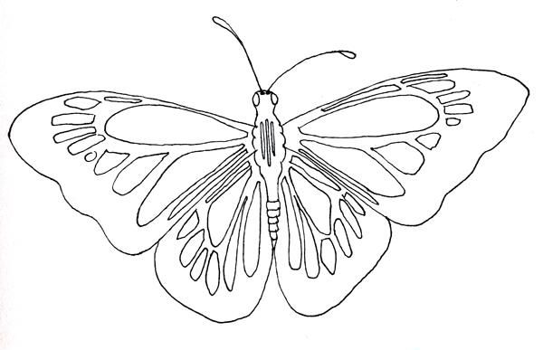 Monarch - image 2 - student project