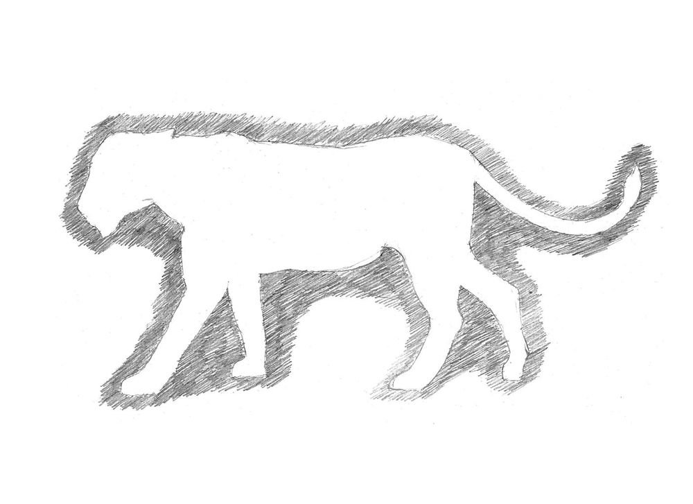 Project: Animal Drawing - image 1 - student project