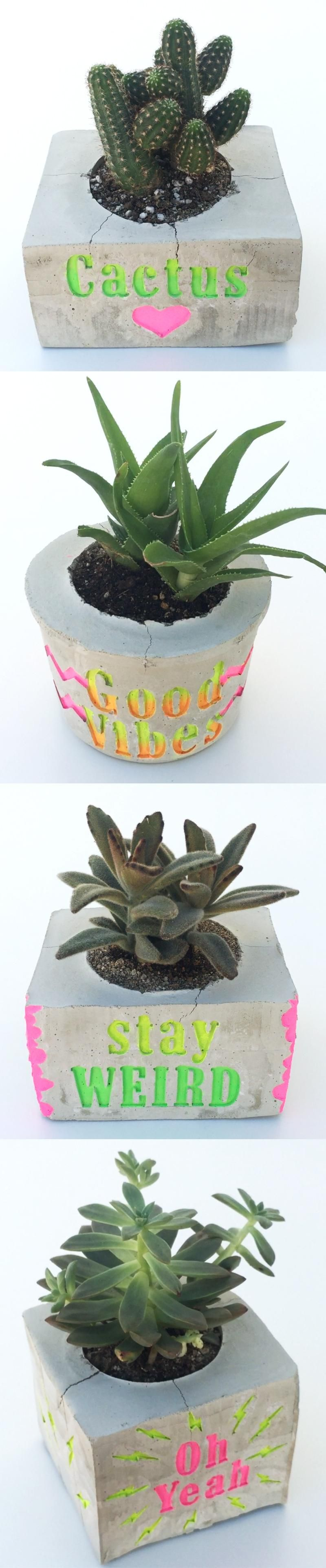 DIY: Make a Cement Planter & Engrave a Personalized Message (SAMPLE PROJECT) - image 7 - student project