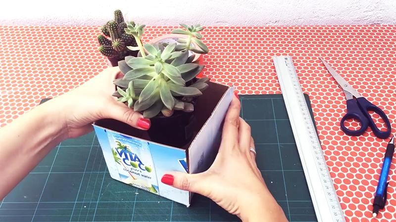 DIY: Make a Cement Planter & Engrave a Personalized Message (SAMPLE PROJECT) - image 1 - student project