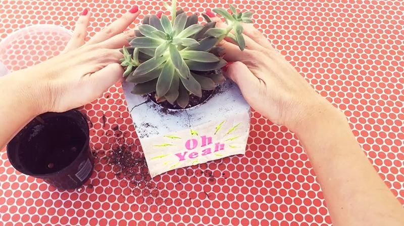 DIY: Make a Cement Planter & Engrave a Personalized Message (SAMPLE PROJECT) - image 6 - student project