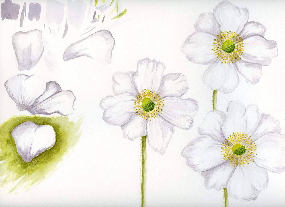 Exploring white and green - image 1 - student project