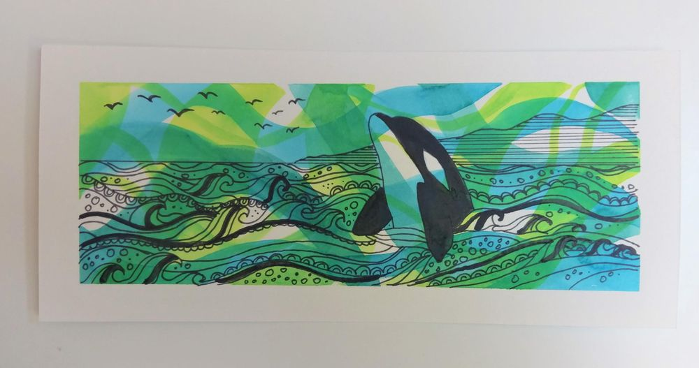 Seal in a Kelp Forest & Orca - image 2 - student project