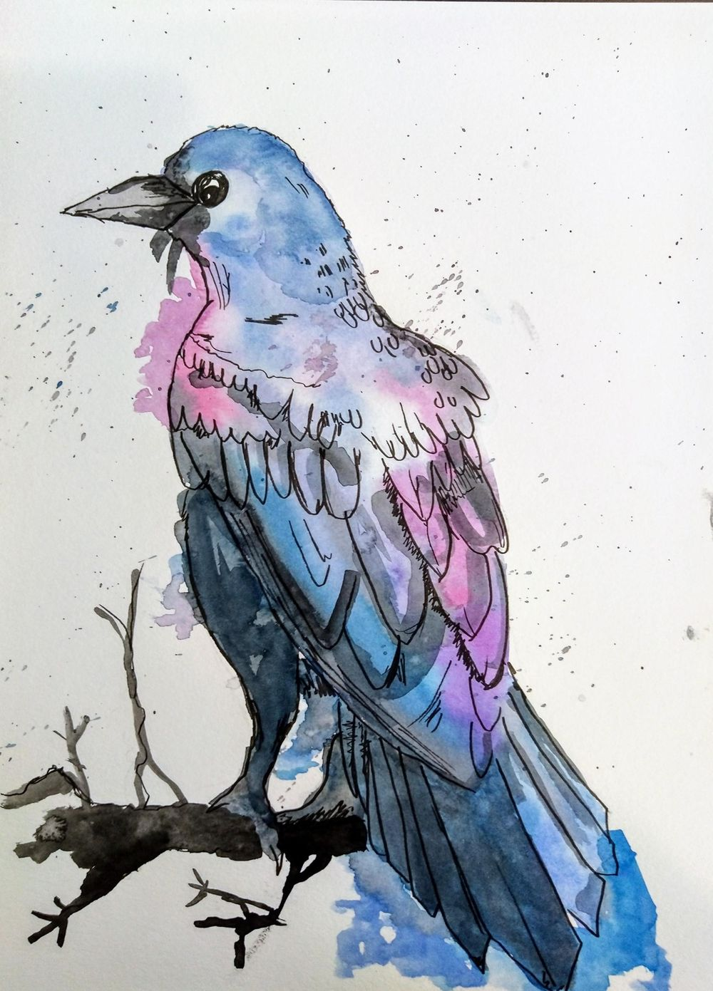 Raven Illustration in a relaxing line and watercolour wash technique - image 1 - student project