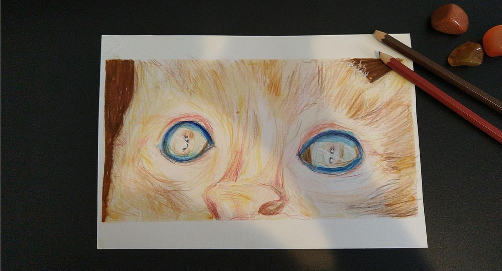 Colored Pencil Drawing Technique: Blending with Solvent - image 1 - student project