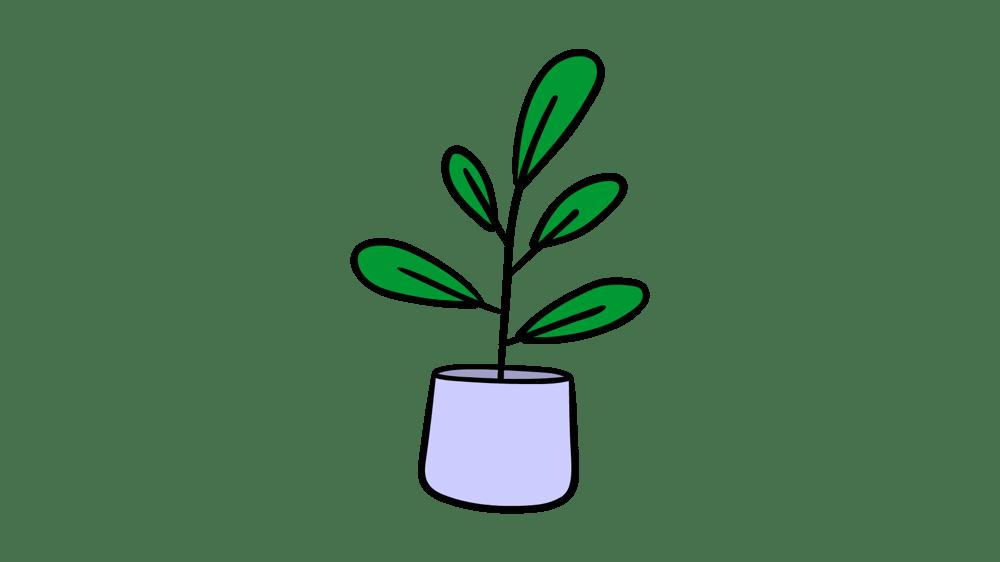 Plants Morph - image 1 - student project