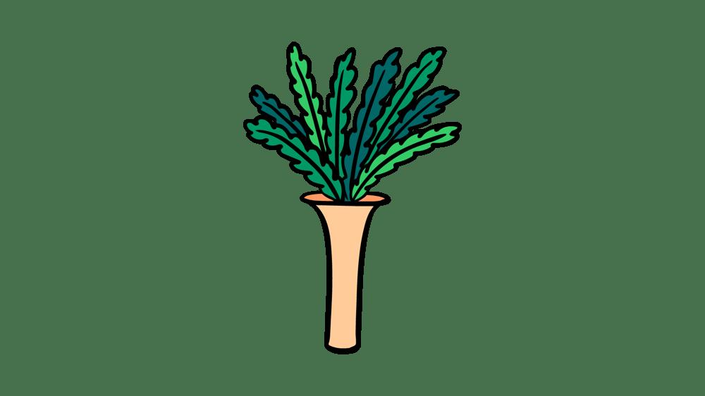 Plants Morph - image 2 - student project