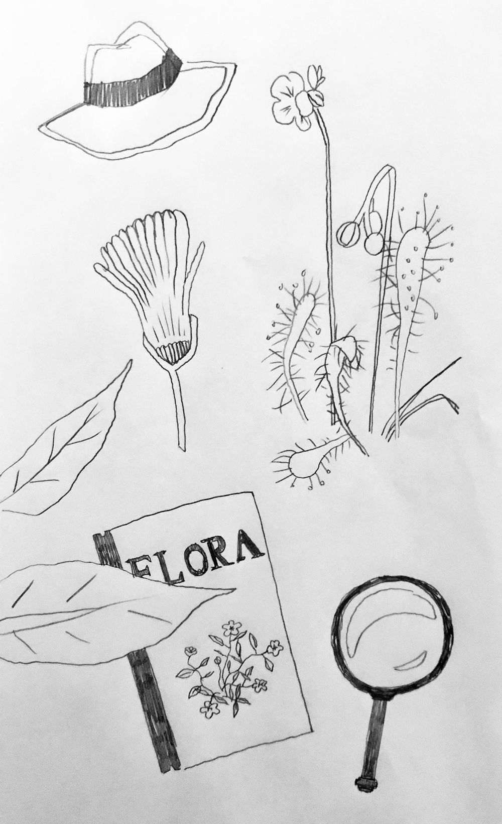 Tools of a botanist - image 2 - student project