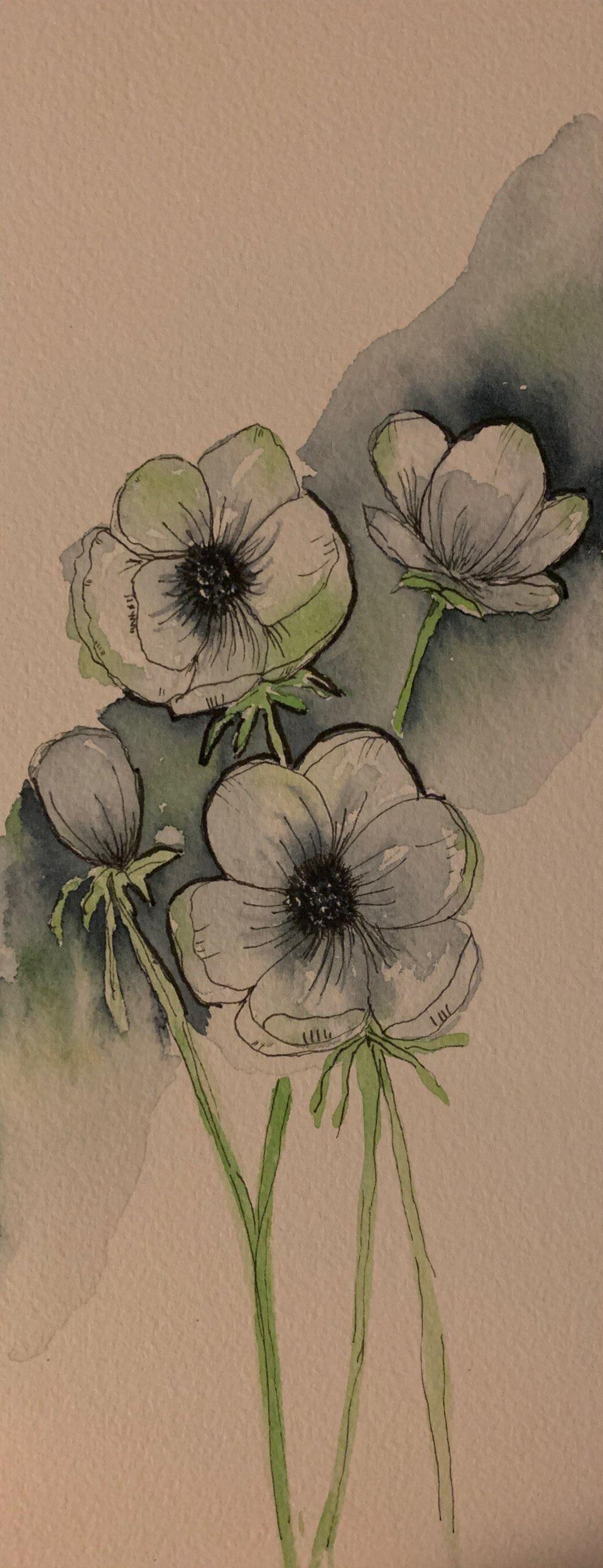 Anemones - Florals - image 2 - student project