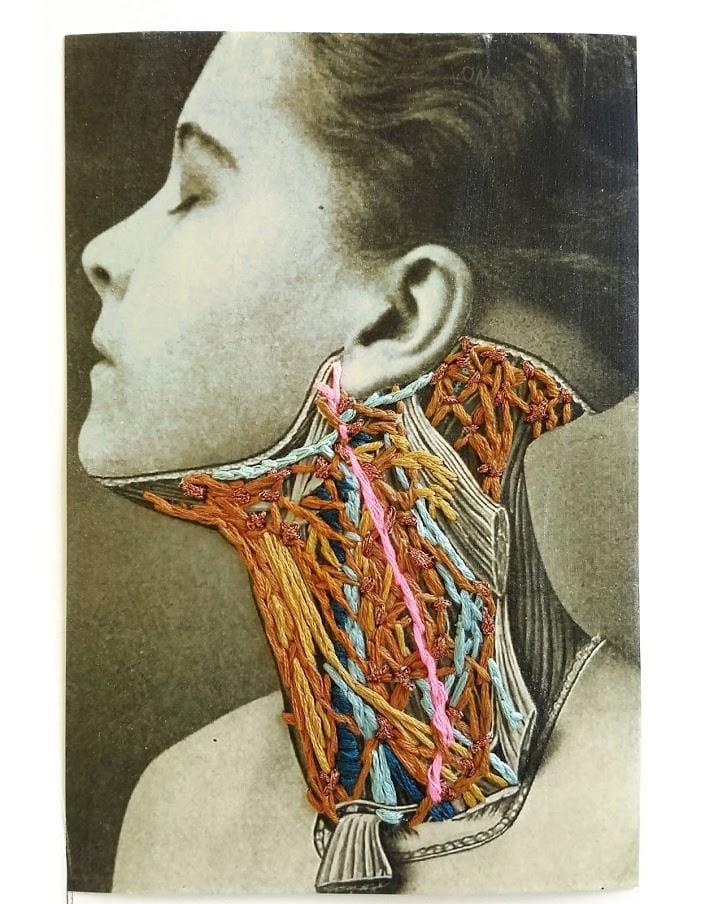 Throat Anatomy - image 1 - student project
