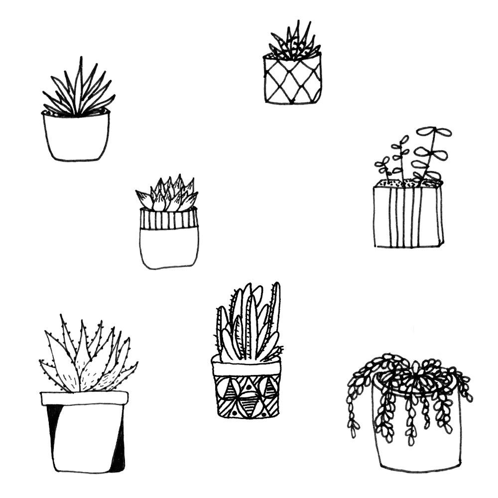 Cactus pattern - image 1 - student project