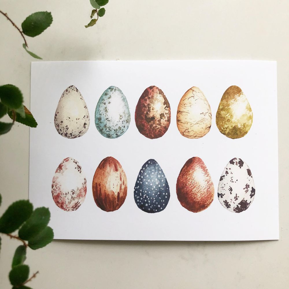 Learning Texture with Bird Eggs - image 1 - student project