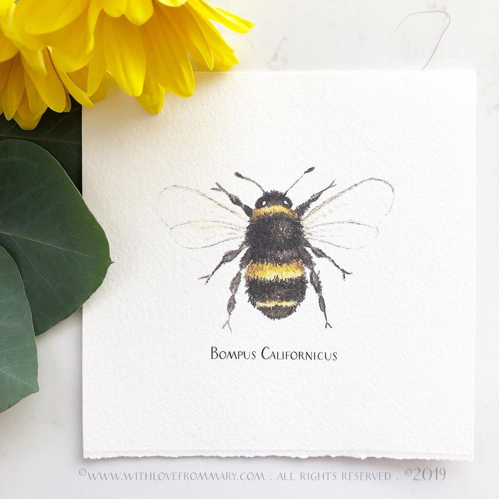 A Bee 3 Ways - image 2 - student project