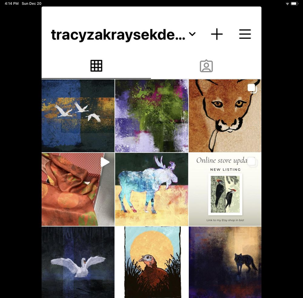 My Instagram Profile - image 1 - student project