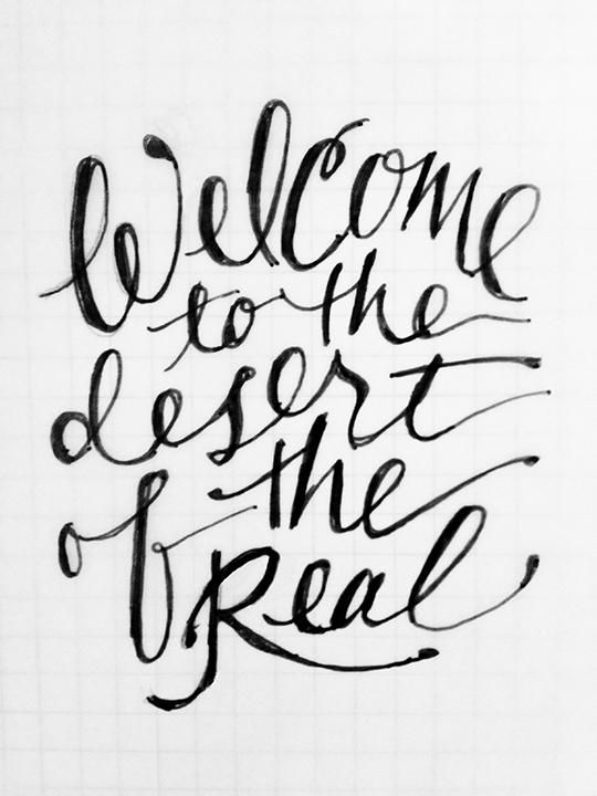 Welcome to the Desert of the Real (Baudrillard quote) - image 1 - student project