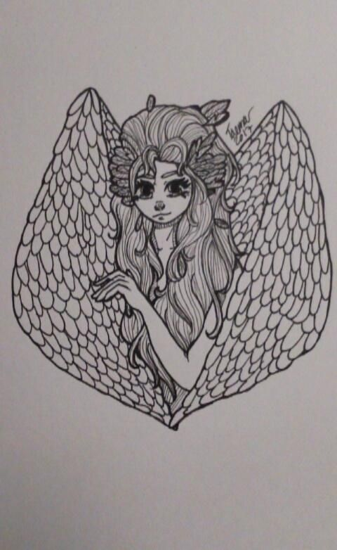 Dove Lady? - image 3 - student project