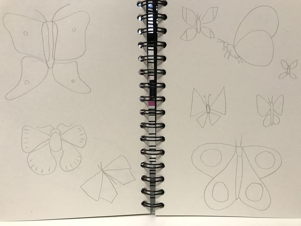 Drawing Butterflies in Illustrator - image 1 - student project