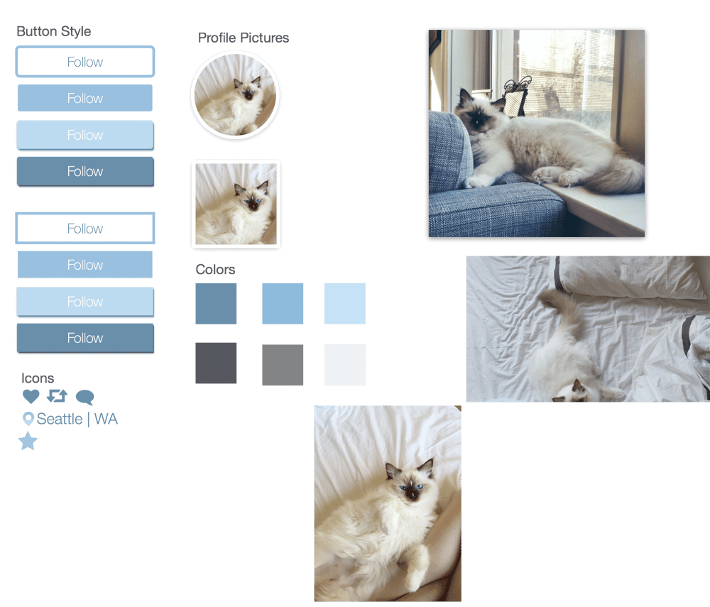 User Profile - Cat  - image 1 - student project