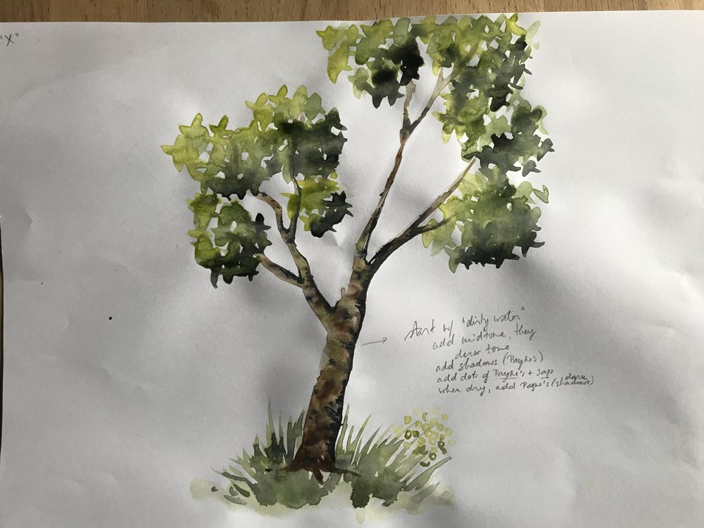 Watercolour trees - image 5 - student project