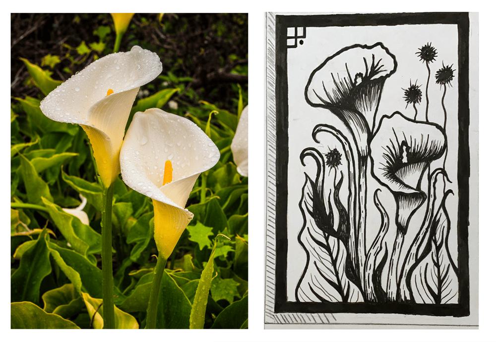 Arum Lily Linoprint - image 1 - student project