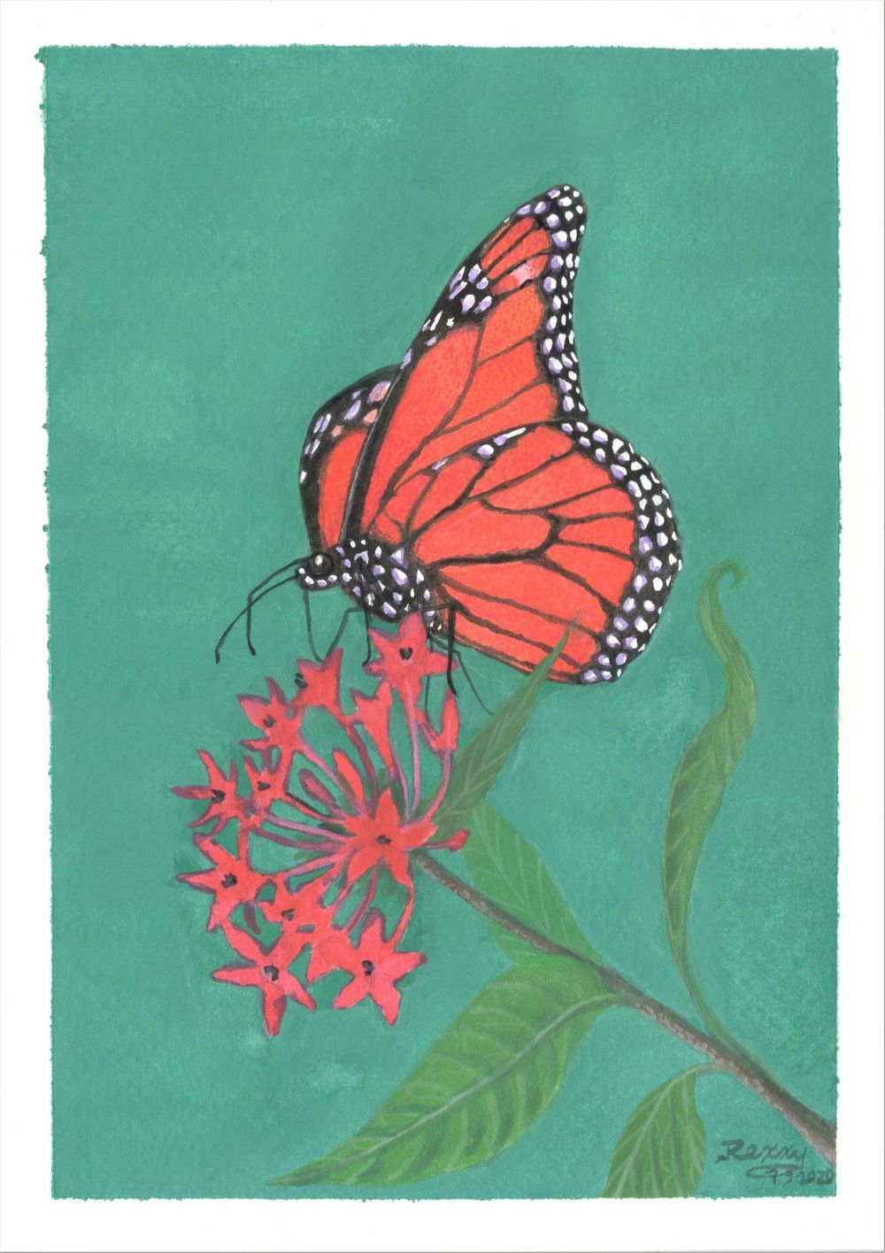 Butterfly paintings in gouache - image 1 - student project