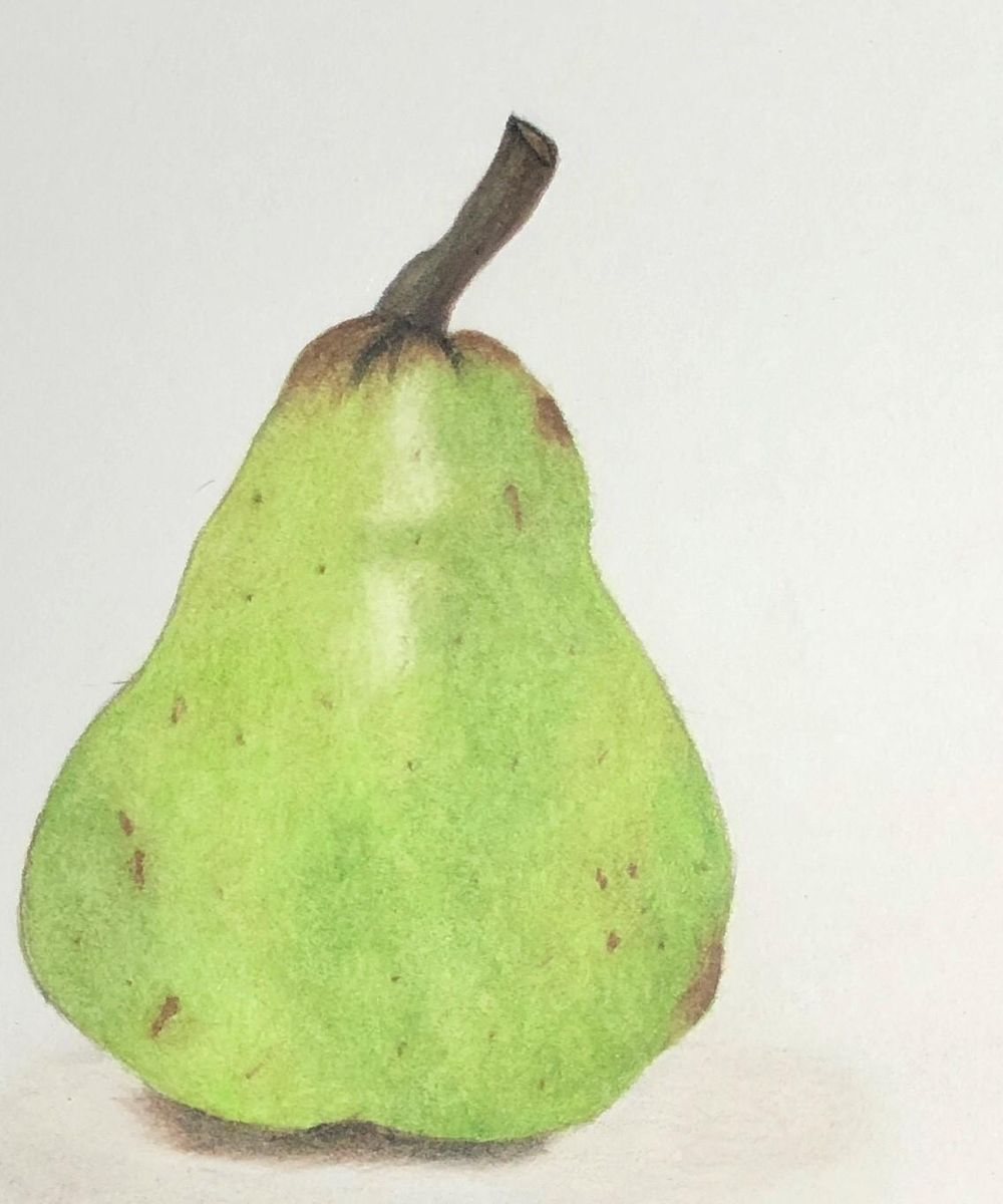 Pear - image 1 - student project