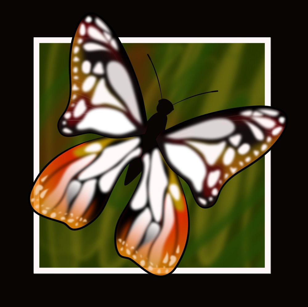 Stroke pressure - Tribal Tattoo/ Vector butterfly - image 1 - student project