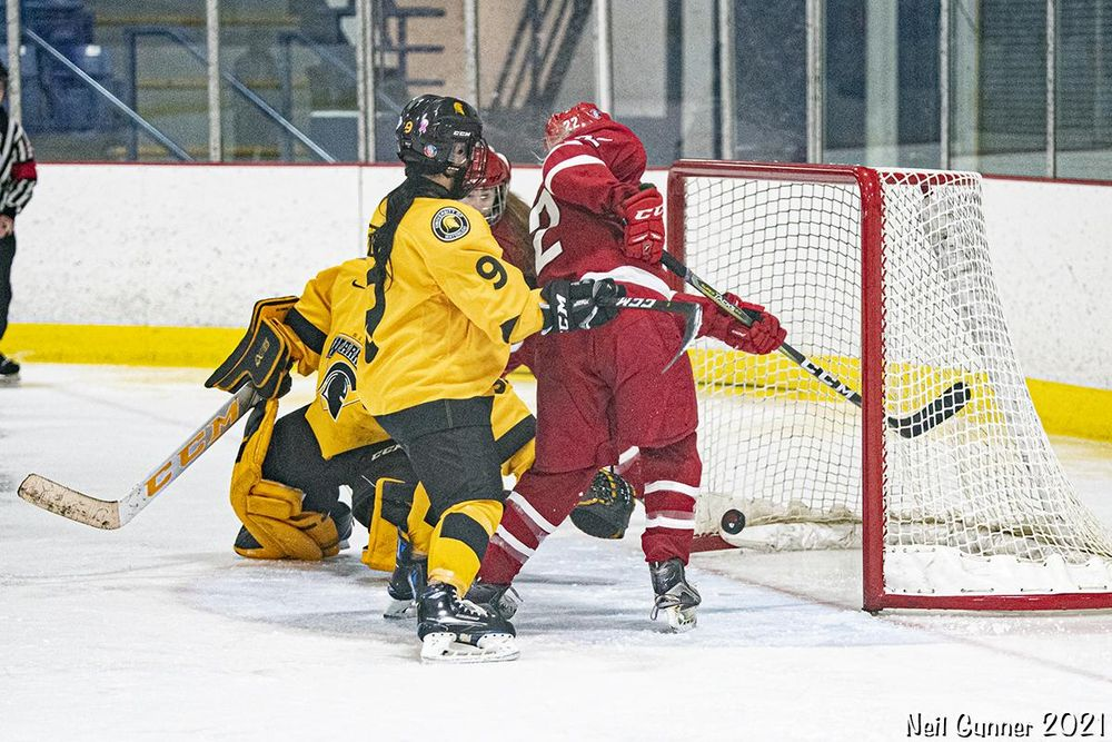 Example Project: Hockey - image 9 - student project